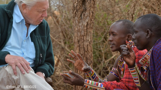 Sir David Attenborough learning about the Lion Guardians program from Lion Guardian Olubi