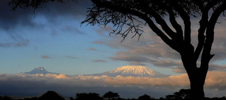 Peace has returned to Amboseli